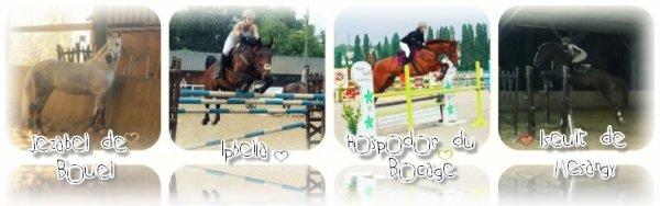 EquestrianxSecrets ♥