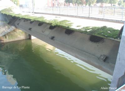 Haute Meuse 2007 - Chômage de la Navigation du 22/9 à 19h30 au 15/10 à 6h00. Prolongé jusqu'au 18/10 à 19h > Flott. 2,50m à La Plante.