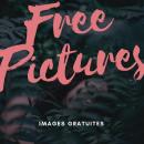 Photo de FreePictures
