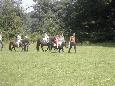 Les ballades à poneys