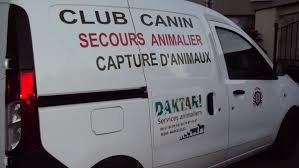Services animaliers