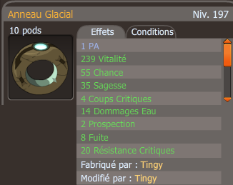 Ninja Anneau Glacial Exo PA 2 runes