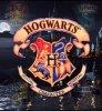 HarryPotterRonHermione