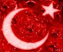 Photo de turkish-de-67