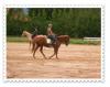 .  « Monter un cheval vous donne un goût de liberté. » .