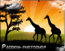 Photo de Passion-Photoshop