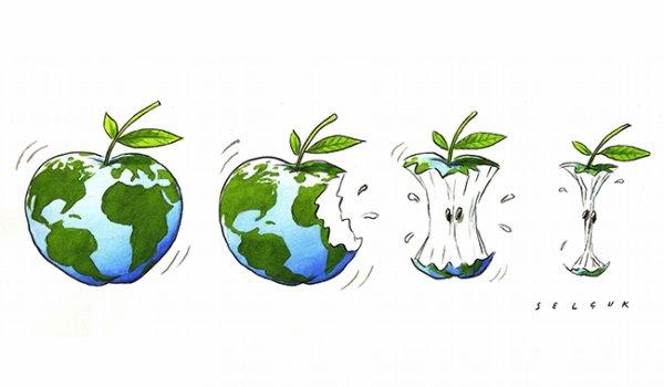 Ecologie = santé des bébés
