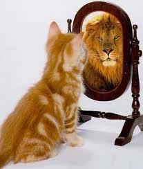 Petit chaton voudrait être lion
