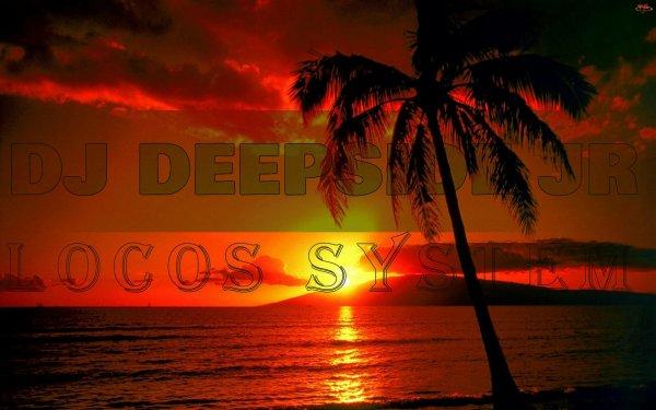 LOCOS SYSTEM / DJ Deepside Jr. - Westdreams & Yong K Party Moombhaton 2k14 (2015)