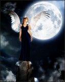 Photo de XxSweet-Angel-xX