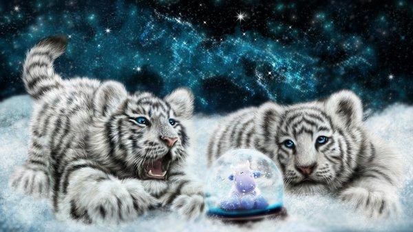 Ma passion des tigres