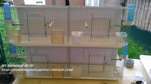 cage de préparation faite maison