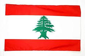 Soirée Sos Liban le samedi 21 mars 2020 Remise à plus tard