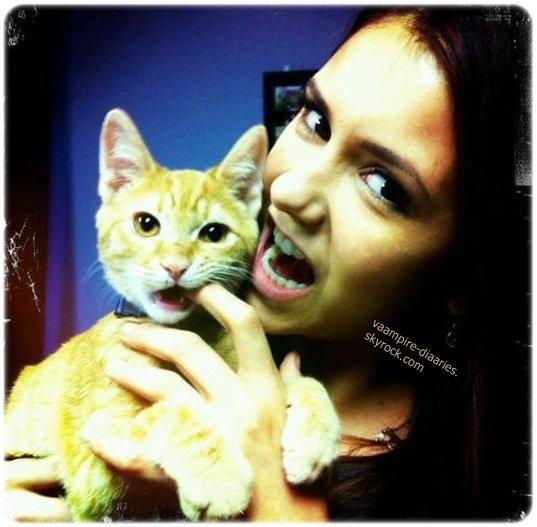 Nina a posté sur son twitter une photo d'elle et son chat.