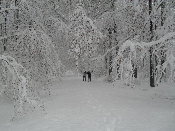 Toujours le bois a 500 metres de chez moi hihihi