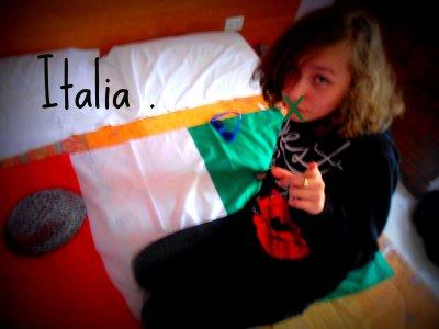 Mes Origines Sont d'Italie , née avec un trés grand apetit , étre italienne est un devoir ne pas le montré est un desespoire , avoir une grande gueule est notre fierté , c'est ce qui nous fait respecter , mais si tu n'aimes pas l'italie tu es mon pire ennemi alors un conceil d'ami casse - toi d'ici