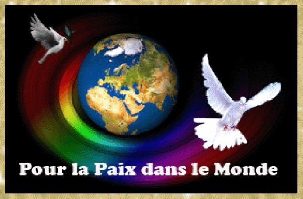 ~~REVE DE PAIX~~J'aurai aimé être une colombe pour survoler le monde et souffler la paix dans chaque recoin.