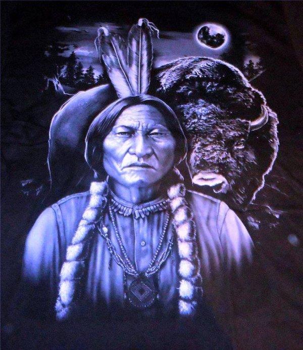 Sagesse amérindienne: propos de Sitting Bull, chef sioux Hunkpapa. 1875