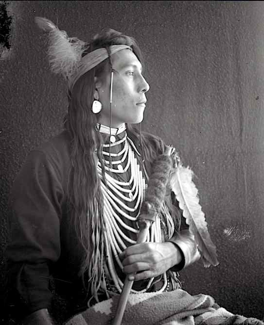 Les Crows, également appelés Corbeaux, Absaroka ou Absáalooke