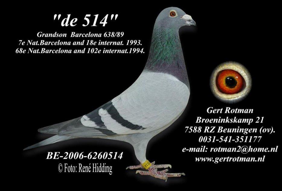 Blog de vancaeyzeele-62640