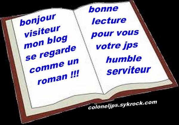 bonjour je retructure mon blog