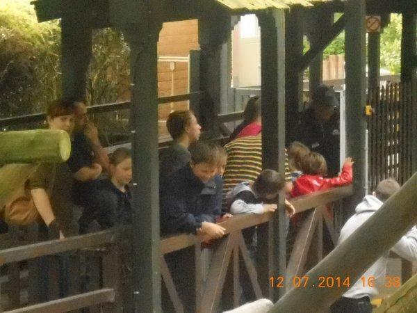 12.07.2014 - Superbe après-midi à Bellewaerde Park
