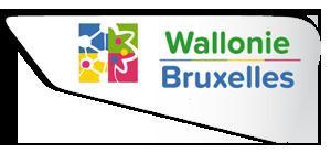 """5902 fois """"Merci"""" pour avoir voté sur la page Facebook de Wallonie - Bruxelles"""