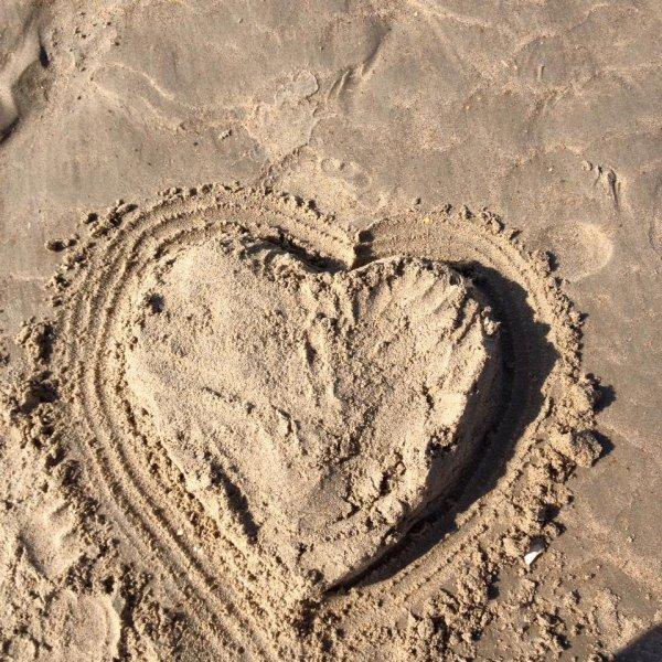 30.08.2016 - A la plage de Coxyde