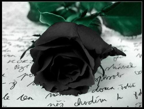 Fin de l'amour (Du 05.12.2000 au 12.03.2017) - Fin de ce blog