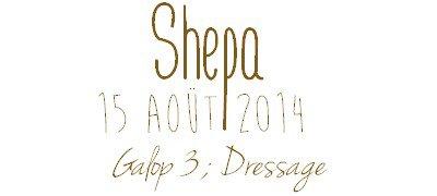 Vendredi 15 Août 2014