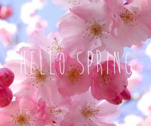 ✿ THE SPRING ✿
