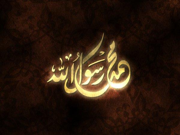 قال الله تعالى : << لقد جاءكم من أنفسكم عزيز عليه ماعنتم حريص عليكم بالمؤمنين رؤوف رحيم -129->> سورة التوبة
