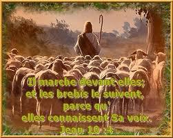 verset biblique