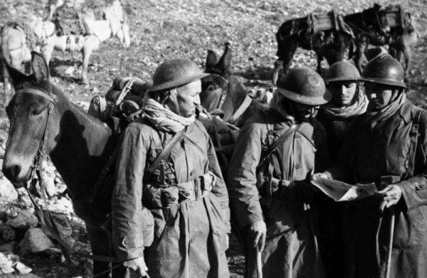 1943 / 1944 Goumier  Tabors avec un poignard  Trench Knife M 1918