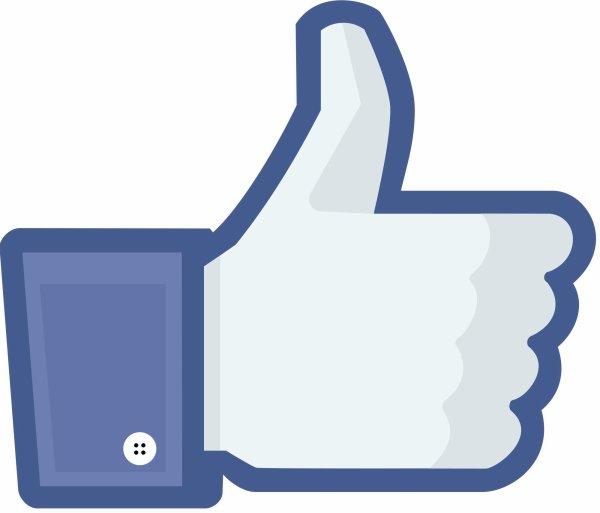 Page Facebook : DRAFTSWOMAN