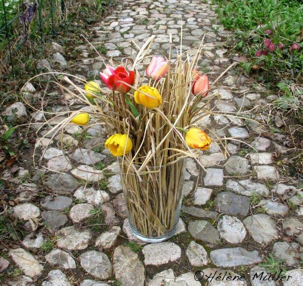 Tulipes et roseaux