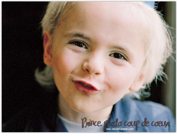 * ___/13/02/2003//__Prince fêtera ses 14 ans dans 9 jours, en attendant voici mes photos coup de coeur de ________________________Prince, Paris et Blanket qui ont été prise à l'occasion de son 6ème anniversaire ! *