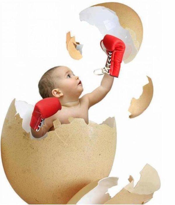 bibi boxe thai