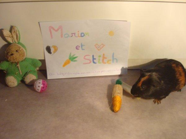 Pour Marion et Stitch <3