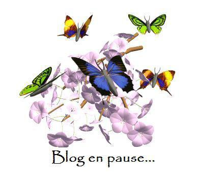 Blog en Pause Temporairement