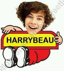 Harry beau c'est beau la vie pour les fans et pas les groupie