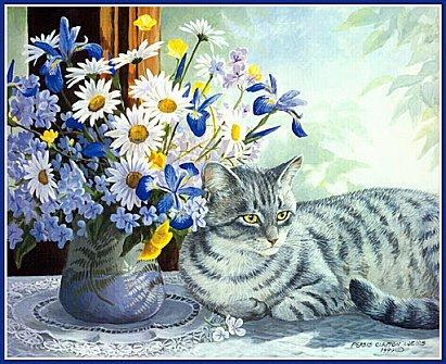 des images de  chats