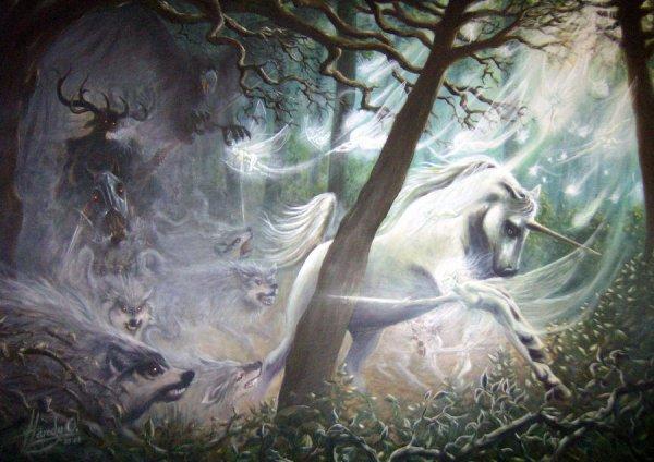 D'autres images de Licornes