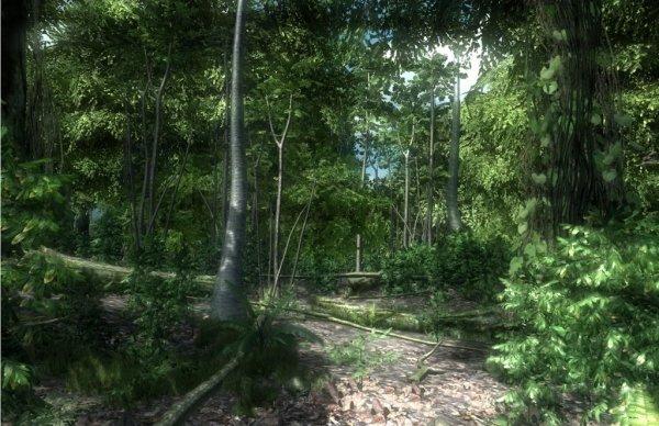 image paysage jeux video