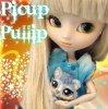 Picup-Pullip
