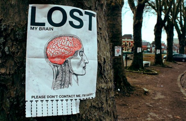 .Have You Seen My Brain ?.