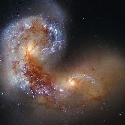 Un foetus dans l'espace ?