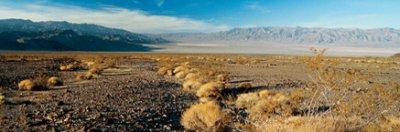 Dans 5 millions d'années:L'Amérique du Nord...un désert
