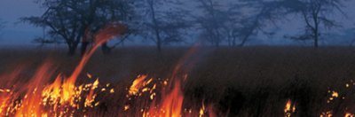 Dans 5 millions d'années:L'Amazonie...archisèche