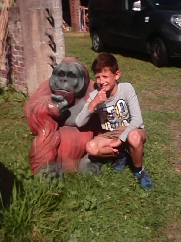 alexandre pensif comme un orang-outan